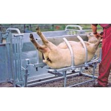 sheep turn over crate, image