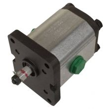 Group 1-6.6 CC/Rev Gear Pump, image
