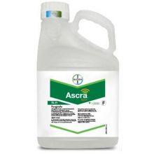 Ascra Xpro - 5l - (Bixafen, Fluopyram and Prothioconazole), image